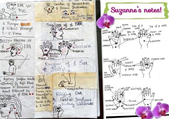 Sue's notes